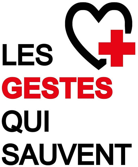 32927_213_logo-gestes-qui-sauvent.jpg