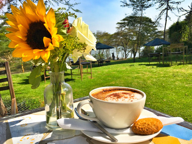 Sunflowers and a Cappucino