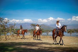 Chui Horse Safari.jpg