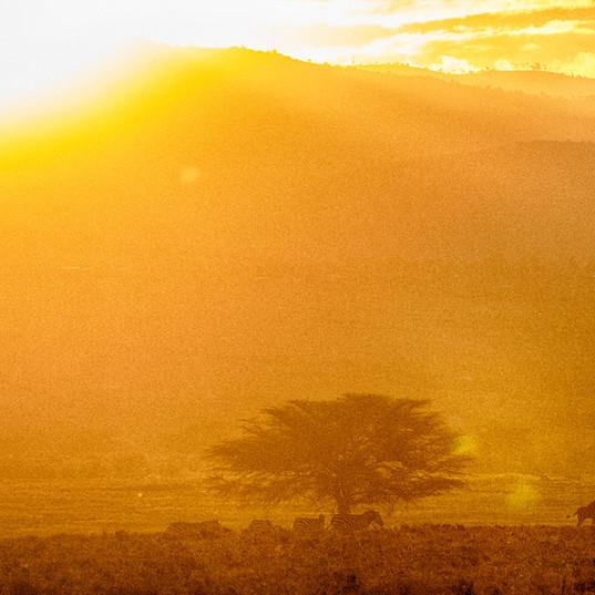 Sunset over the Mau