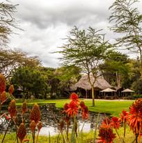 Chui Lodge & the pond