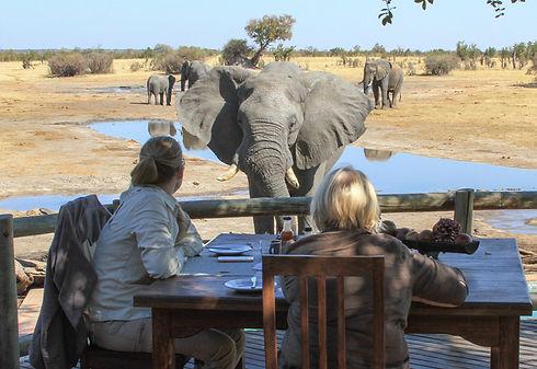 14 - Imvelo Safari Lodges - Nehimba lunc