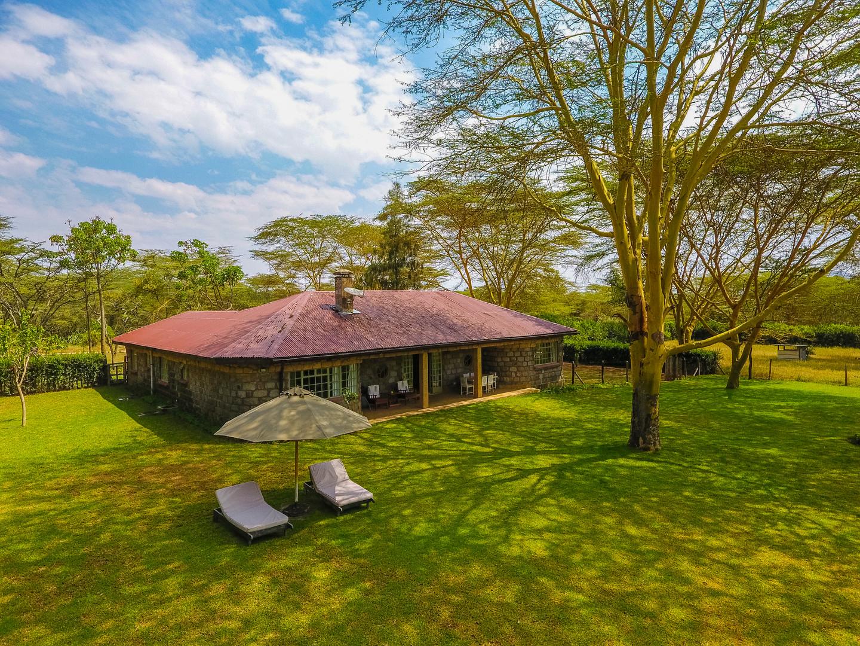 Safari Home