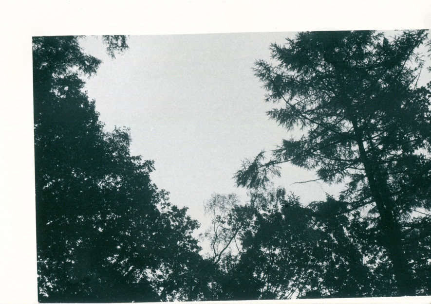 black and white analogue photograph