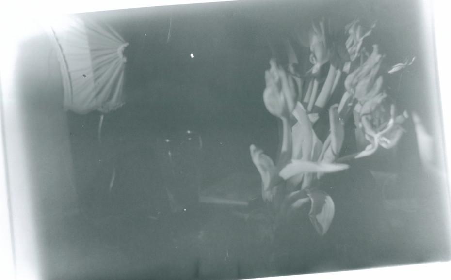 flowers darkroom