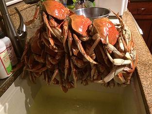 steve_estrada_crab_4_1018.jpg