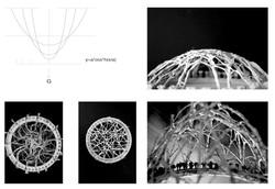 1B_studio_shape_experiment8_AG.jpg