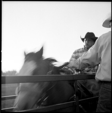 rodeo#3_PINEDALE.jpg