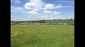 Colesdale Farm