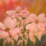 """""""Dogwood Blossoms III"""""""