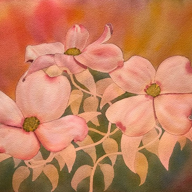 """Dogwood Blossoms III"""