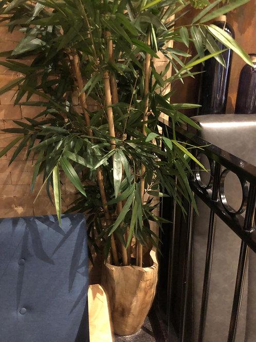 Bamboe plant kunst in houten pot
