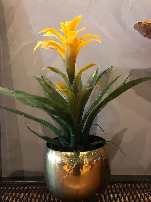 Gouden bloempotje