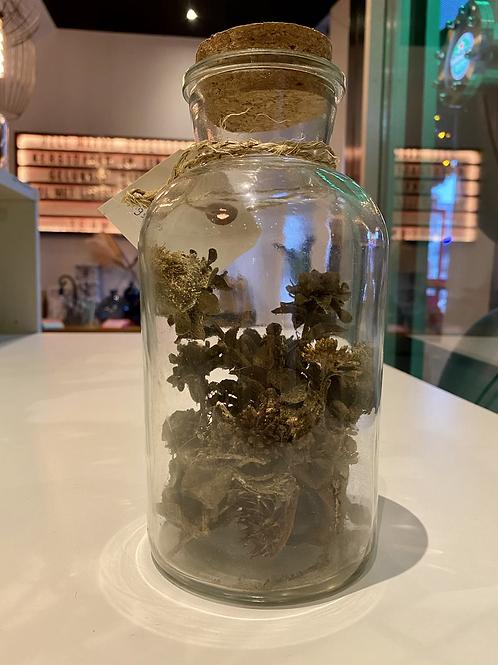 Gedroogde bloemen in fles bruin