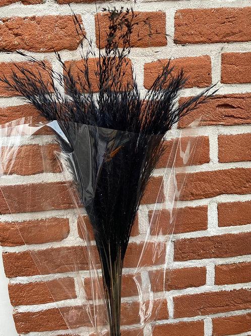 Decoratie pluim zwart