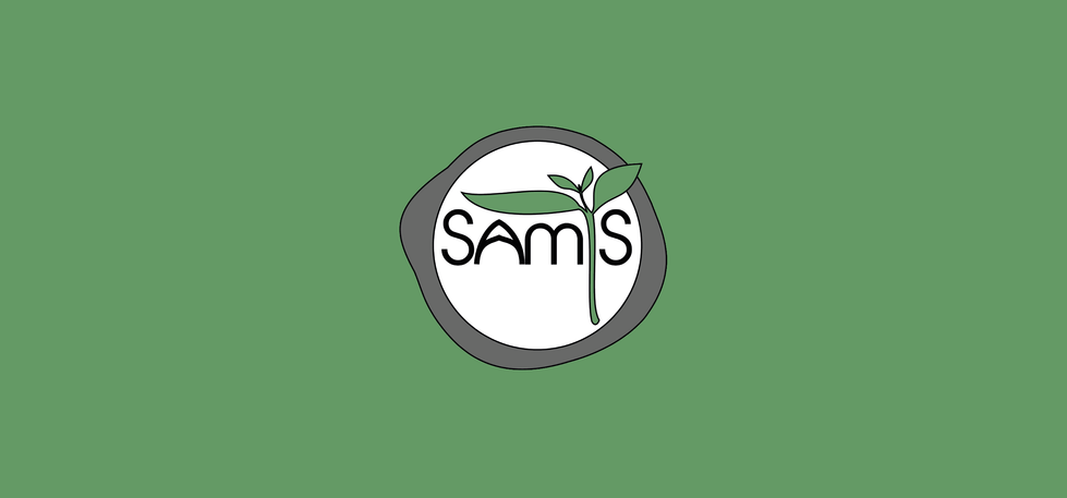 Logo-ontwerp BiLi