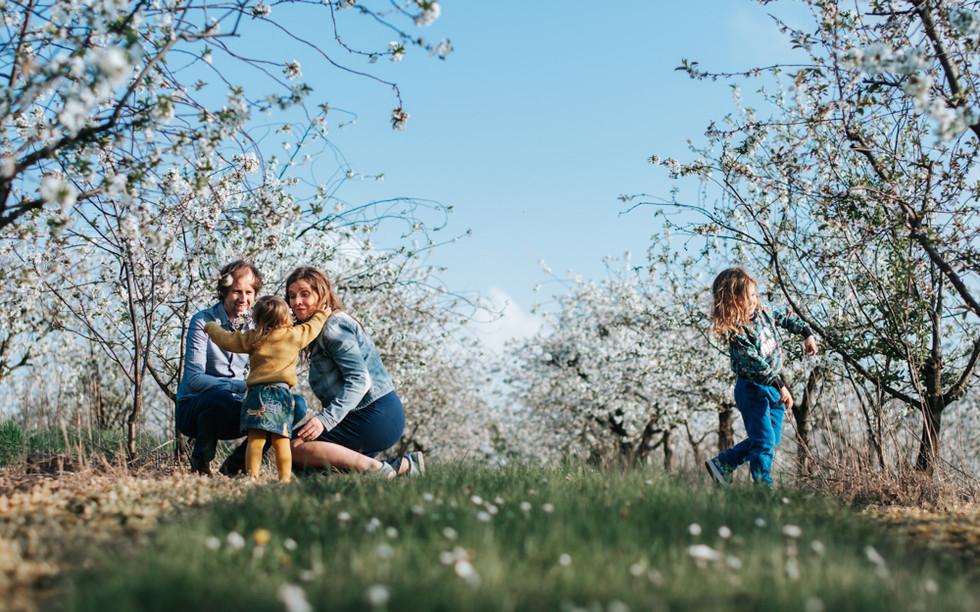 Familie fotograaf BiLi Foto & Design Holsbeek