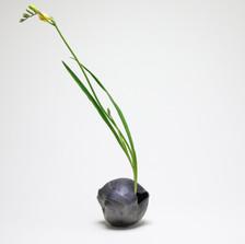 Organic Kabin