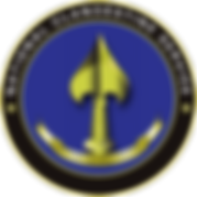 National_Clandestine_Service.png
