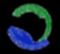CFLSPN logo-transparent background.png
