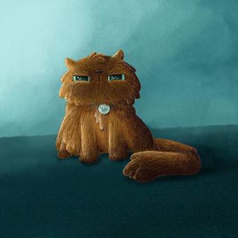 Kitteh. Grumpy kitteh. #hazeluthgerdhone