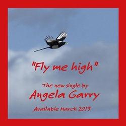 Fly Me High.jpg