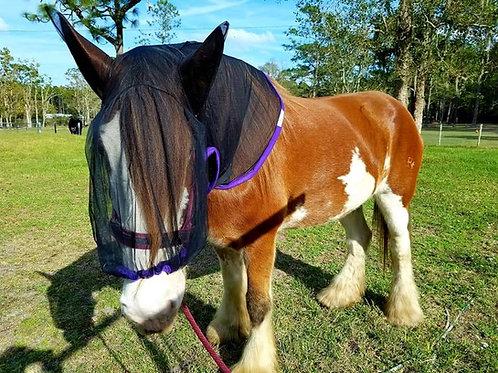 DRAFT SIZE HORSEHOODIE