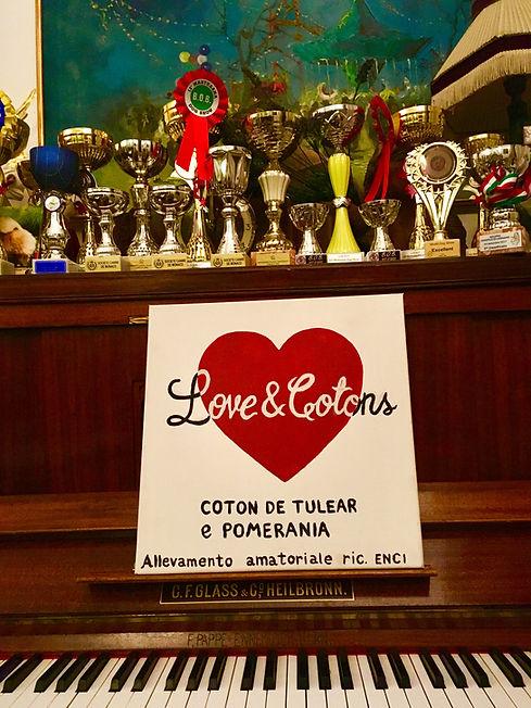 coton de tulear | allevamento | loveandcotons | lombardia | Italia | cuccioli | trofei