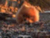 Bijoux%20copia_edited.jpg