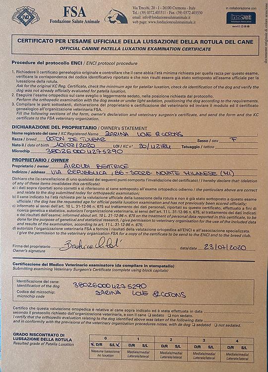 Certificato esame rotula ZAZA'