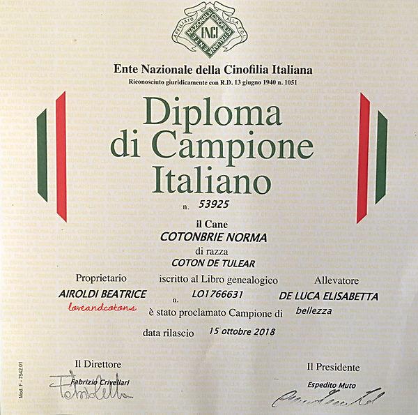 Diploma Campione Italiano NORMA
