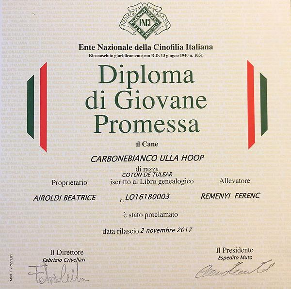 Diploma di Giovane Promessa Dolly