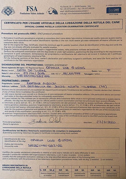 Certificato esame rotula Ophelia