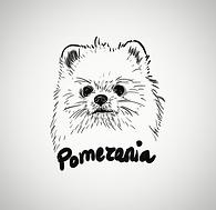 pomerania leti_edited.png