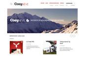 CosyNEVE France Novembre 2013