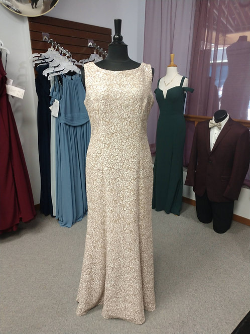 Alex Evenings Floor Length Dress in Champagne/Ivory