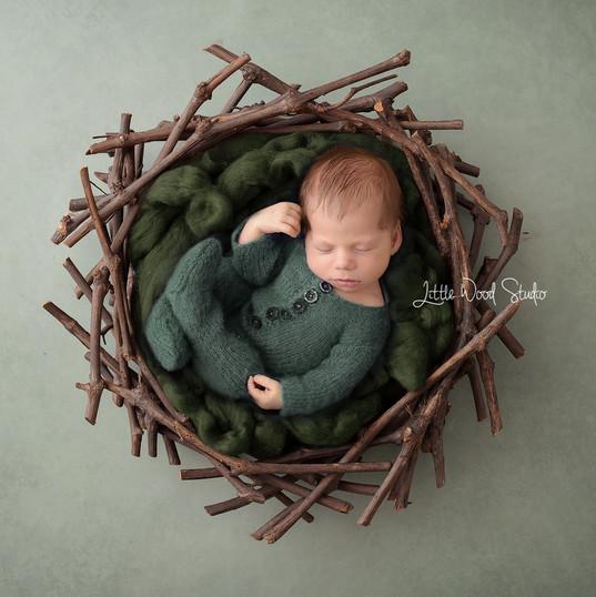 Sage nest web.jpg