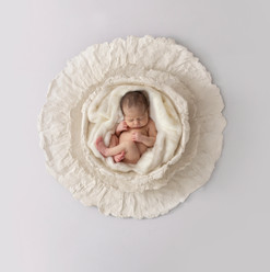 Newborn Digital Backdrop Newborn Digital Background
