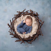 Painted Nest blue web.jpg