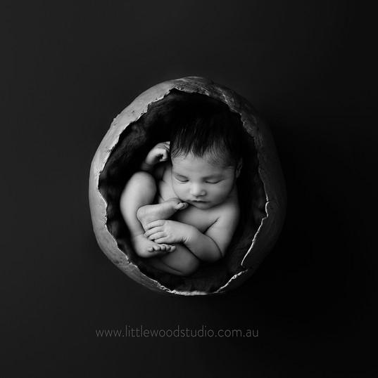 Grey Sphere Web.jpg