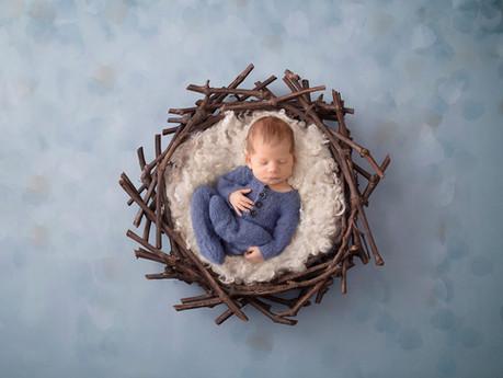 Baby Wylie - Adelaide Newborn Photographer
