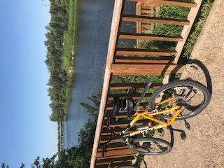 CYCLING thru COVID-19-84