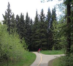 Springtime on our trails