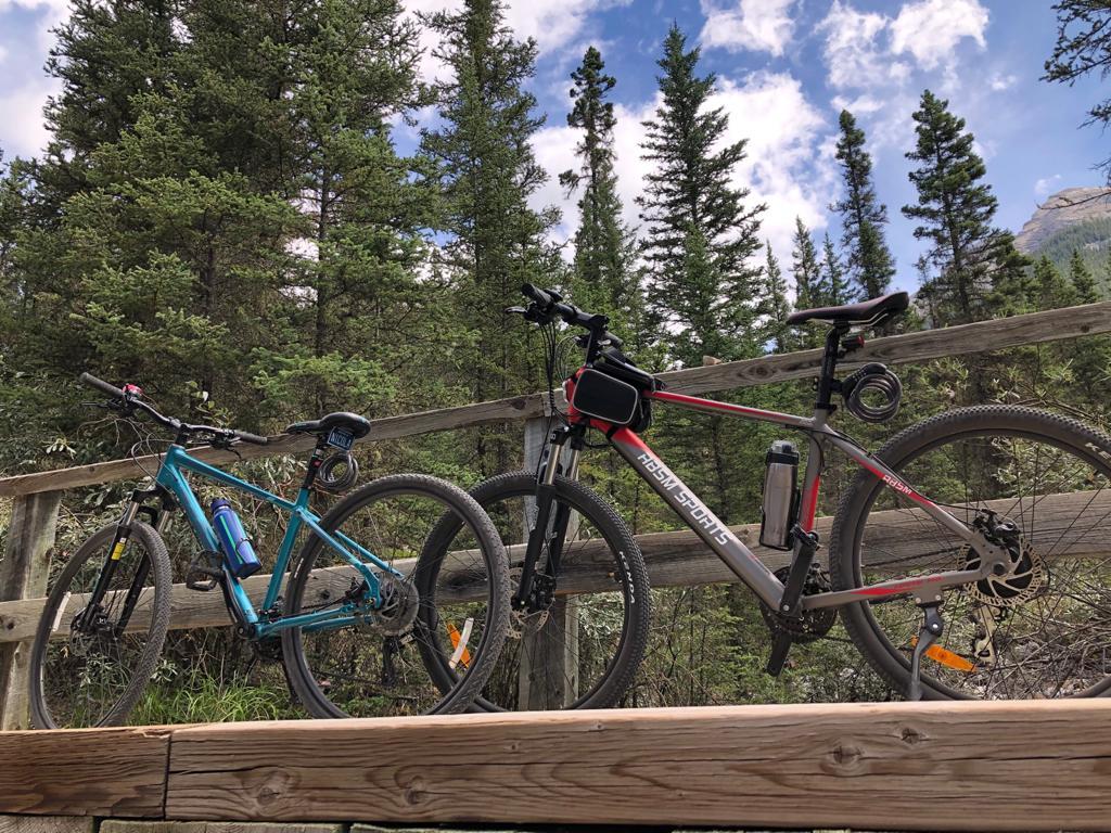 Cycling thru COVID-19-118