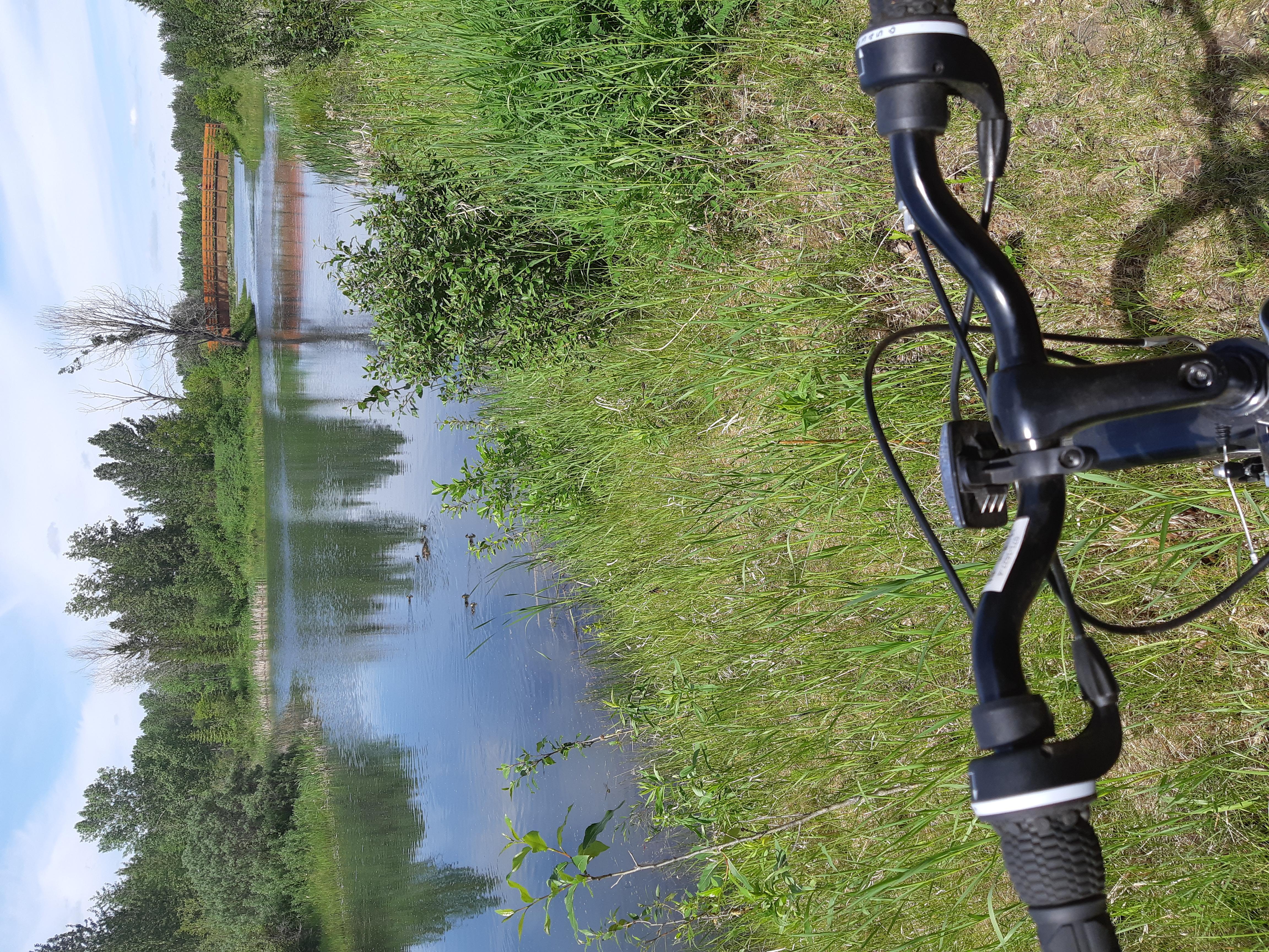 Biking thru COVID-19-51