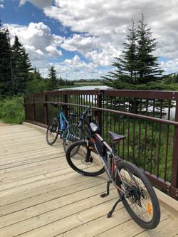 Cycling thru COVID-19-16