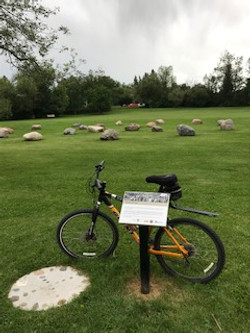Cycling thru COVID-19-110