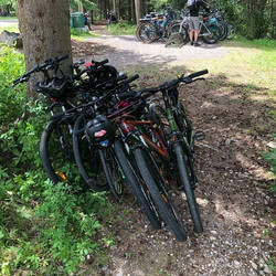 Cycling thru COVID-19-48