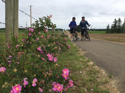 Biking thru COVID-19-35