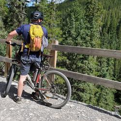 Cycling thru COVID-19-123